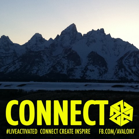 Connect With Nature Photo Gallery