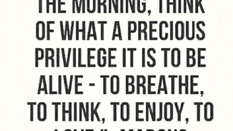 Be alive. www.A-7.co #avalon7 #futurepositiv #quotes