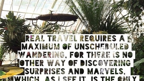 Maximize wandering. #alanwatts #avalon7 #futurepositiv #adventure! Www.avalon7.co