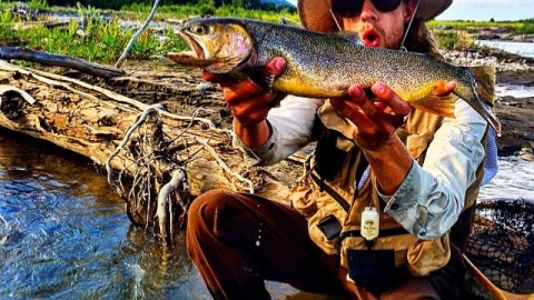 #AV7Renegade @instagraham11235 has been out slaying trout lately!  #avalon7 #liveactivated #flyfishing www.avalon7.co