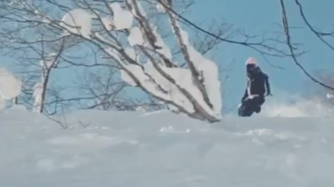 Powder dreams with @nobuyoshi1984 in Japan. #avalon7 #liveactivated #snowboarding #inspiredstate