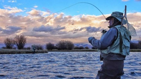 The moment you feel life on the end of the line, everything else drops away, and you are truly #hereandnow.  #avalon7 #liveactivated #flyfishing www.a-7.co