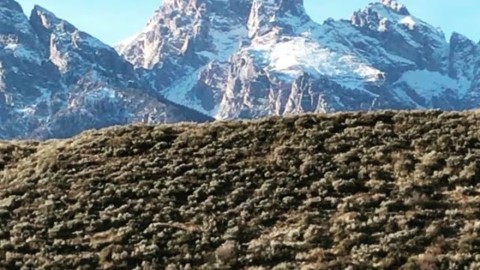 Enter the Inspired State. #avalon7 #jhlife #tetons #wyoming www.a-7.co