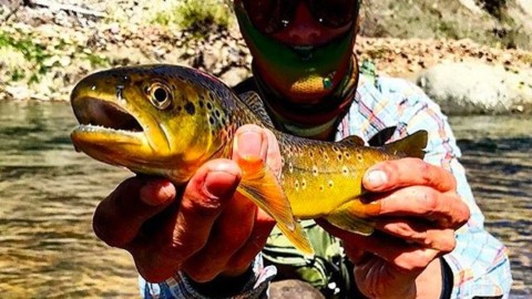 Fishing season is on in Utah!  @lord.ofthe.flies235 puts our Mesh Faceshield to the test on the river to keep the sun, wind and bugs at bay. #AVALON7 #liveactivated #flyfishing #flyfishingfacemasks www.a-7.co