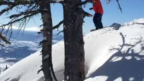 Who needs a little bit of this right now? ?♂️? rider: @robkingwill @jacksonhole vid by @cartercountry  #jhdreaming @avalon7 #liveactivated #snowboarding www.a-7.co