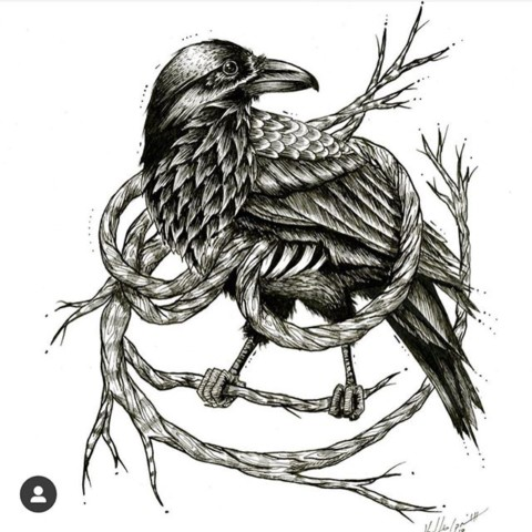Art Show Tonight! Come out to @medicinewheelwellness in Jackson Hole to check out some amazing new work by A7 Artist @kyehalpin!  Libations and good times from 6-8pm. See you there! #ravens #art #illustration