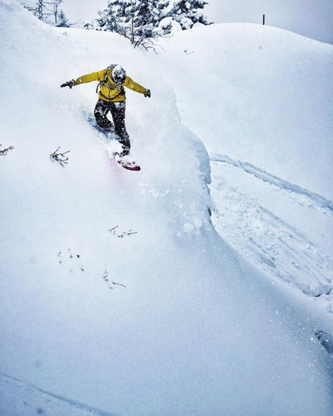 Ride the white wave! #surfsup #LiveActivated #jhdreaming #snowboarding #facemasks www.avalon7.com